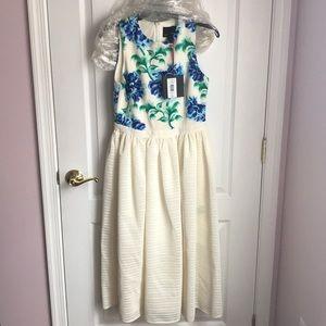 NWT Cynthia Rowley Dress 8